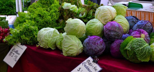 Portland Farmer's Market
