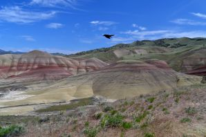Painted Hills, OR